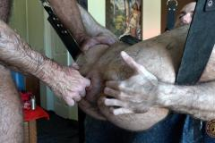 Horny-hairy-older-studs-House-of-Angell-Ryan-fisted-Daddy-Will-Angell-tight-ungloved-fist-7-porno-gay-pics
